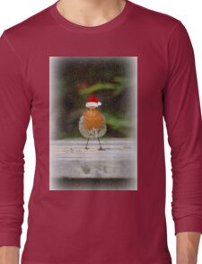 Holiday Robin Long Sleeve T-Shirt