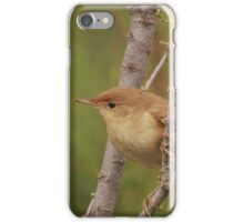 Willow warbler iPhone Case/Skin