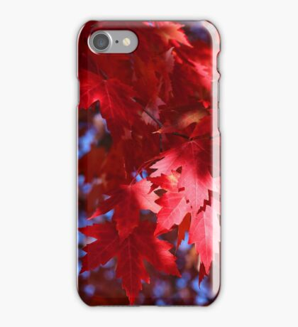 Fall Maple Red 10 iPhone Case/Skin