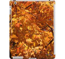 Fall Orange 21 iPad Case/Skin