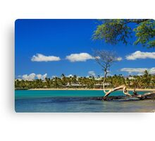 Anaehoomalu Bay Canvas Print