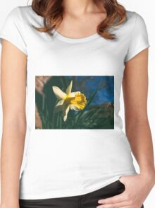 Narcissus Women's Fitted Scoop T-Shirt