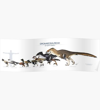 Dromaeosaurid Dinosaurs of north America Poster