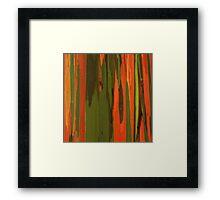 Hawaiian Eucalyptus Framed Print