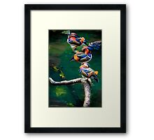 Chillin' out poolside in the rain forest Framed Print