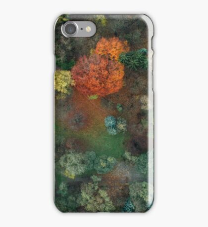 Fall colours from above 2 iPhone Case/Skin
