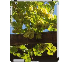 Overhead Grape Harvest - Summertime Dreaming of Fine Wines iPad Case/Skin