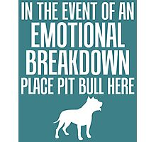 In Emotional Breakdown Place Pit Bull Here Photographic Print