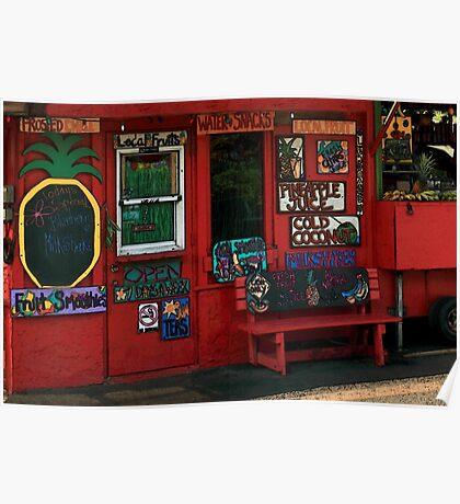 Hawaiian Juice Bar Poster
