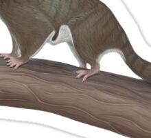 Volaticotherium antiquum - extinct gliding mammal Sticker