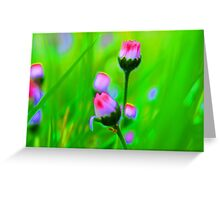 Daisy Party Greeting Card