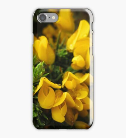 Irish Gorse Whin Furze with Dew iPhone Case/Skin