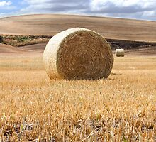 Photo of Wheat Bale Against Blue Sky by griffingphoto