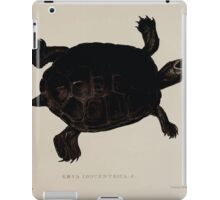 Tortoises terrapins and turtles drawn from life by James de Carle Sowerby and Edward Lear 037 iPad Case/Skin