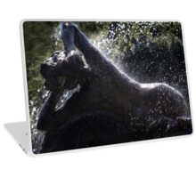 Lady in the Fountain Laptop Skin