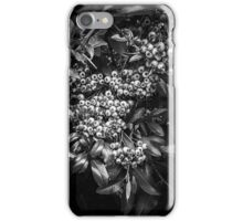 Black and White Autumn Berries iPhone Case/Skin