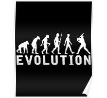 Baseball Evolution Poster