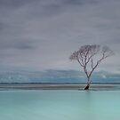 Beachmere Blue - Qld Australia by Beth  Wode