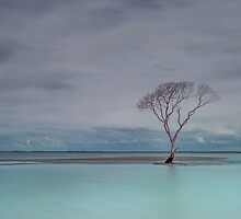 Beachmere Blue - Qld Australia by Beth  Wode