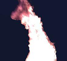 Celebrate - Bonfire by eleventimes