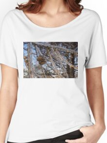 Christmas Decorations by Mother Nature - Three Pine Cones Encapsulated in Ice Women's Relaxed Fit T-Shirt