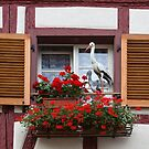 Window with Stork Ornaments and Geraniums by Yair Karelic