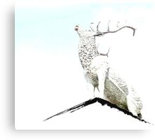 Alebaster Antlers Canvas Print