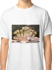 Tree Fungus  Classic T-Shirt