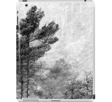 9.11.2016: Pine Trees in Snowstorm iPad Case/Skin