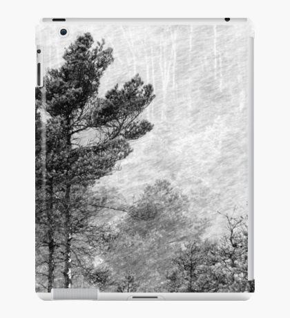 9.11.2016: Pine Trees in Snowstorm iPad Case/Skin