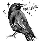 the raven by Paola Vecchi