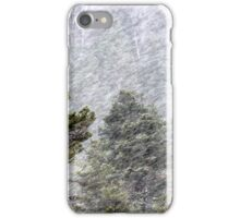 9.11.2016: Pine Trees in Snowstorm II iPhone Case/Skin