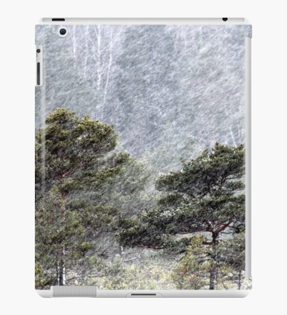 9.11.2016: Pine Trees in Snowstorm III iPad Case/Skin
