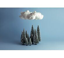 A cloud over the forest Photographic Print