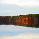 Across the Lake by Eileen McVey