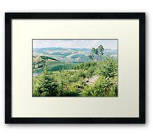 Carpathian landscape Framed Print