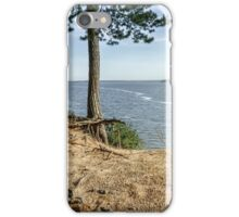 Trees roots near the lagoon in summer iPhone Case/Skin
