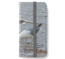 At The Tide's Edge iPhone Wallet/Case/Skin