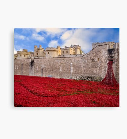 Tower Of London Poppy Display Canvas Print
