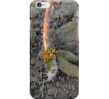 Clairview Mangroves Sunrise Flotsam ,N. Qld Australia  iPhone Case/Skin