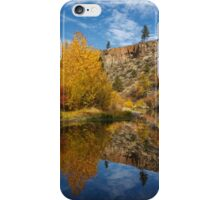 Autumn In The Susan River Canyon iPhone Case/Skin