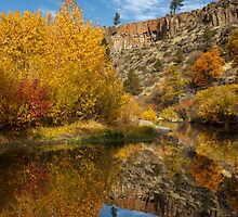 Autumn In The Susan River Canyon by James Eddy