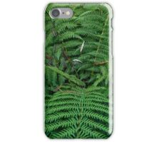 Fern at Heligan iPhone Case/Skin