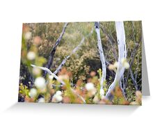 Mt French Wattles Greeting Card