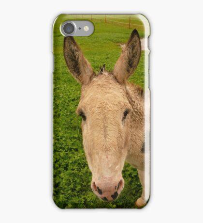 Donkey Face - Castle Marter, Ireland iPhone Case/Skin