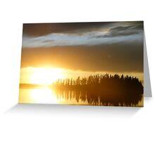 Elk Island National Park Greeting Card