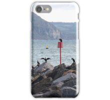 Cormorant Rock.....Dorset UK iPhone Case/Skin