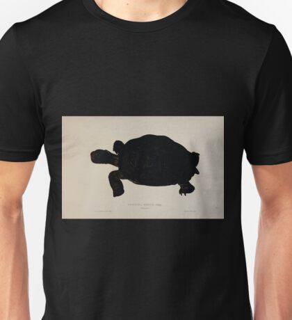 Tortoises terrapins and turtles drawn from life by James de Carle Sowerby and Edward Lear 007 Unisex T-Shirt