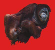 How to Fold an Orangutan Baby Tee