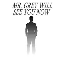 Mr. Grey Will See You Now Photographic Print